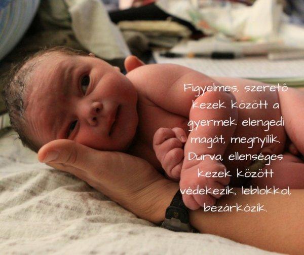 idézetek baba születéséhez 12+1 léleksimogató idézet a születésről | AnyaKlikk